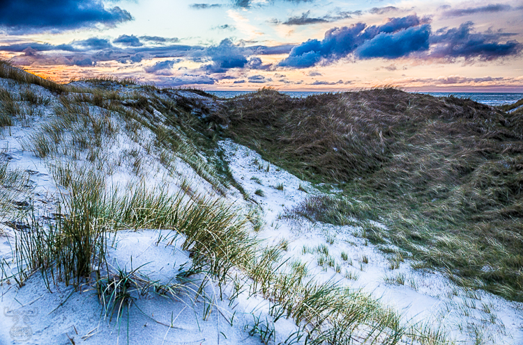 9040 - Little glance over the dunes - -